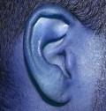 How to Listen: Nine Ways to Improve Your Listening Skills