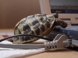 Don't sign a 3 year lease to save £3 per month only to have your IT equipment crawl to a halt after 18 months.