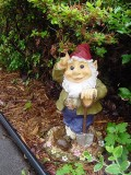 What You Don't Know About Your Lawn Gnome