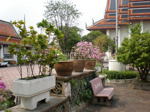 A green environment full with plants and flowers makes the Wat Pho Buddhist Complex even prettier.  Bangkok, Thailand.