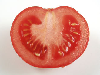 Lycopene is a pigment found in the red part of a tomato.
