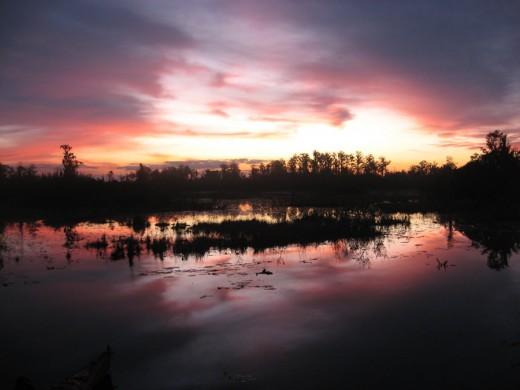 Sunrise Over Chase Prairie- credit Blaine Eckberg  www.fws.gov/