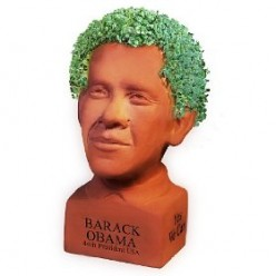 Barack Obama and other presidents Chia Pet heads grow controversy.