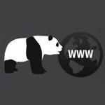 The Google Panda