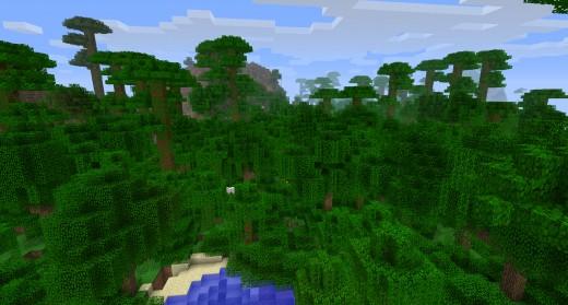 Minecraft 1.2 Jungle Biome