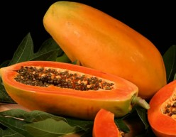Fighting  Obesity with  The Papaya Fruit