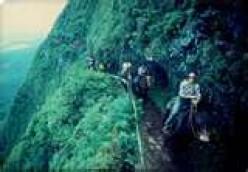Mule trail into Kalaupapa