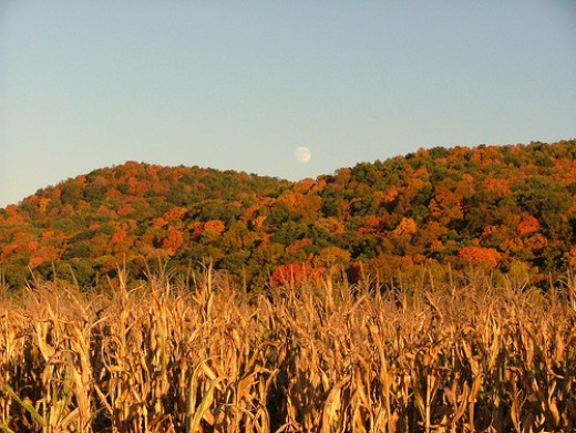 The full moon that occurs nearest the autumnal equinox.