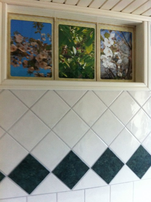 A creative way to have eternal spring and summer in the bathroom!