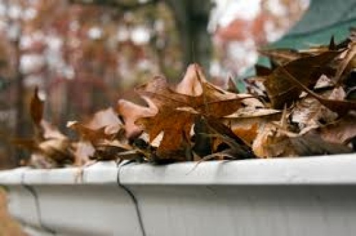 Leaves and debris block gutters and downpipes putting your home at risk of water damage.