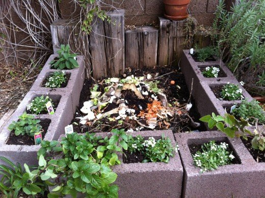 My decorative compost garden complete with rosemary, sage, oregano, thyme, catnip and mint.