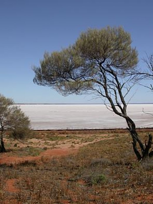 Lake Hart in the Lake Eyre basin, South Australia.