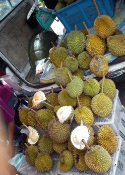 How To Choose Durian, 5 Feature