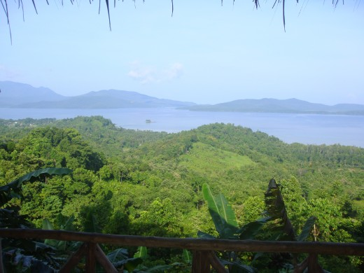 This is a view from our stop of the West Coast of Palawan with lush green forests overlooking a beautiful sea lined by mountains