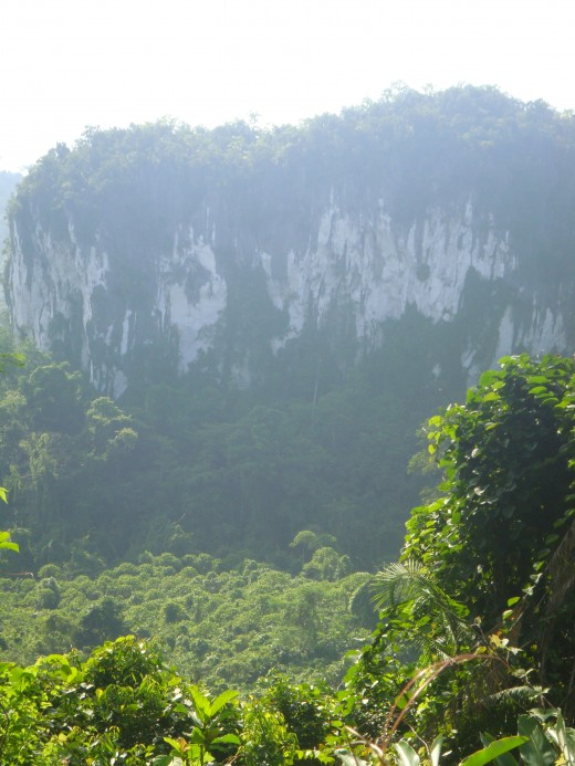 Karst Mountains line the landscape along with Jungle and rice fields.