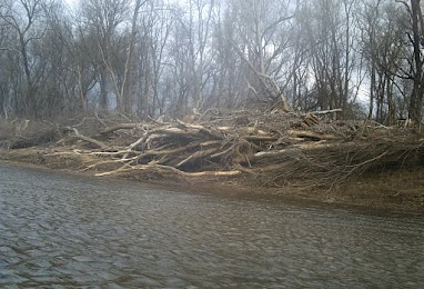 Effects of the flooding last spring I would assume.