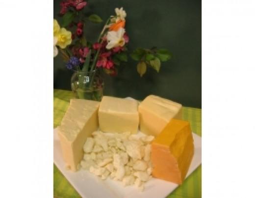 Various CHEDDAR cheeses
