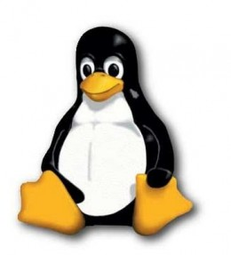 A Linux web server can be shared between many different hosting accounts which allows maintenance costs to be low and hosting companies to offer unlimited resources.