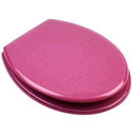 Hot Pink Toilet Seat
