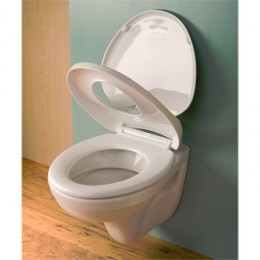 family toilet seat with an extra flap for kids