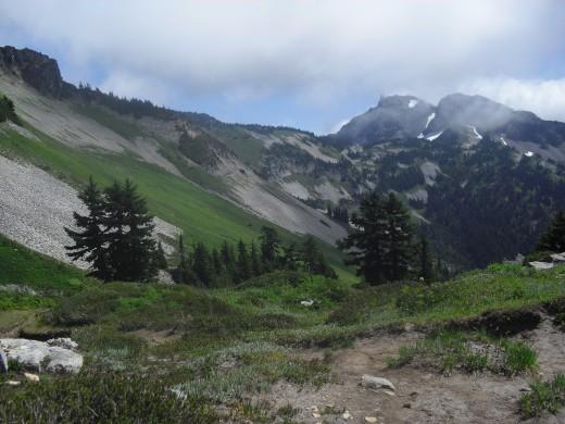near Mt. Rainier