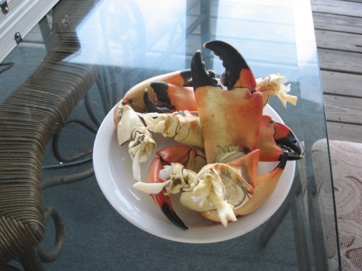 Stone crab claws are delicious!