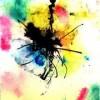 Amay Len profile image