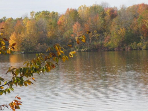 Autumn at Mott Lake