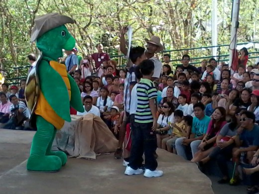 With Pawi the turtle