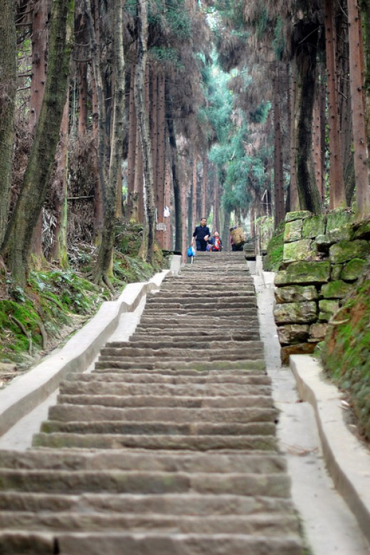 Choose the steps you want to take and stay on them until you reach your destination.