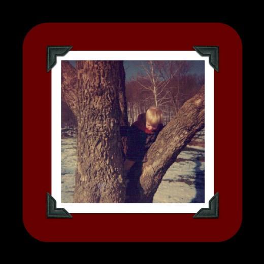 Little me in a tree!