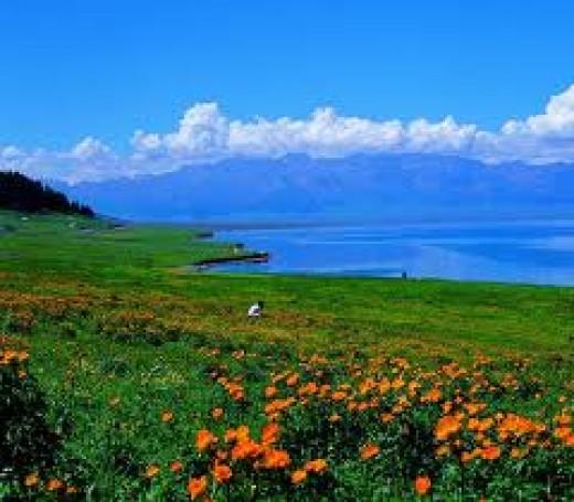 Yili Valley