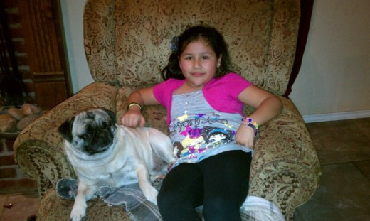 My pug Monster and his friend Yazmin