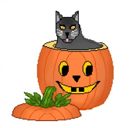 Cute Black Cat Setting In Pumpkin In This Photo