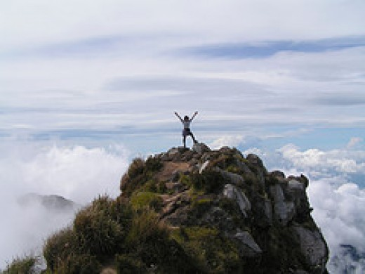 Success from Sweet Caroline Source: flickr.com