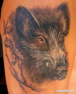 Flying Pig Tattoo DesignsFlying Pig Tattoo Designs