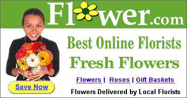 Order your flowers online. Same day delivery!