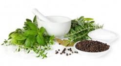 12 Herbs for Hair Loss