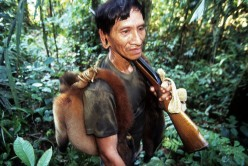 Wild Meat: A growing Commodity in the Yasuni Region