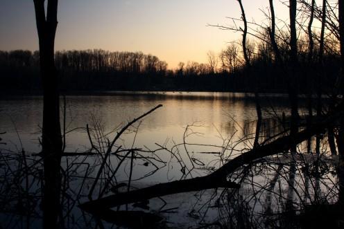 First Light of Spring, Black Fork Bottoms Hunting Preserve, Ashland County, Ohio