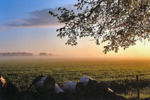 Spring: Farmland sunrise.