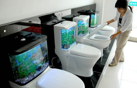 Shopper considering a purchase of a toilet bowl... I mean a fish aquarium.