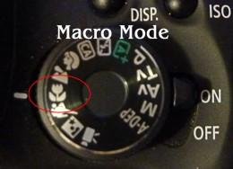 Canon Rebel T3i in Macro mode