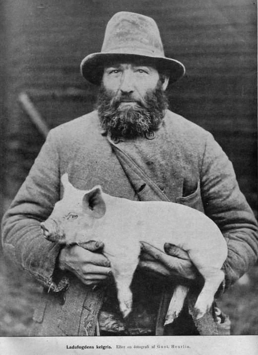 """Swedish pigfarmer with piglet. Early 20th century"""