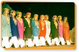 A Kashimiri dance