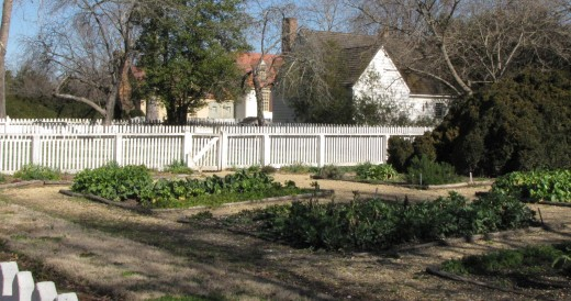 Backyard Winter Garden, Colonial Williamsburg