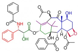 Organic Chemistry Synthesis - Chemical Structure of Taxol.
