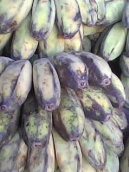 Banana (saba variety)