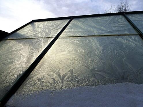 My greenhouse