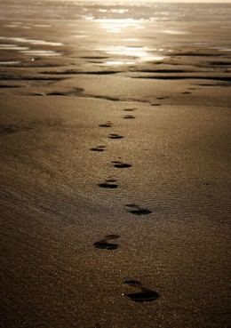 Footprints in the Sand from chris meads1 Source: flickr.com